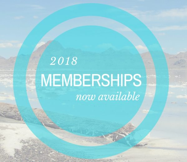 Basic, silver and gold level memberships